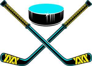 Your Puck Stick and Puck